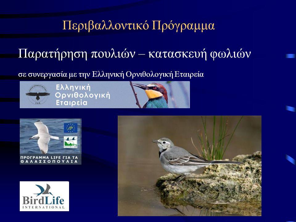 Περιβαλλοντικό Πρόγραμμα Παρατήρηση πουλιών – κατασκευή φωλιών σε συνεργασία με την Ελληνική Ορνιθολογική Εταιρεία