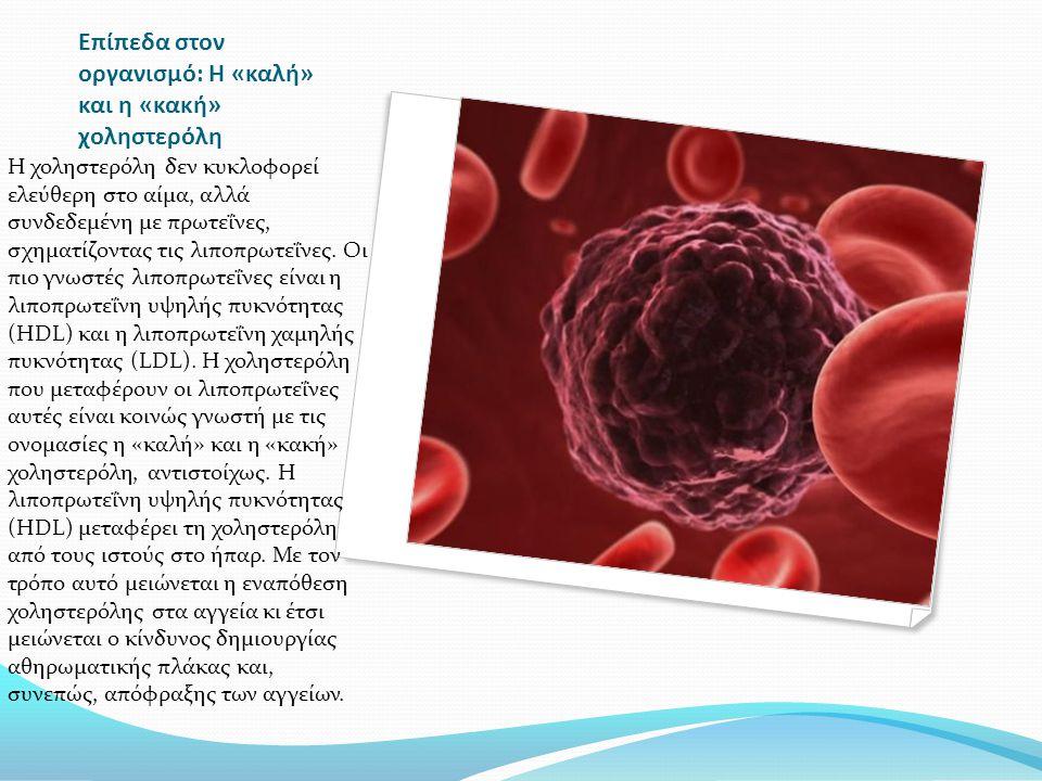Επίπεδα στον οργανισμό: Η «καλή» και η «κακή» χοληστερόλη Η χοληστερόλη δεν κυκλοφορεί ελεύθερη στο αίμα, αλλά συνδεδεμένη με πρωτεΐνες, σχηματίζοντας τις λιποπρωτεΐνες.