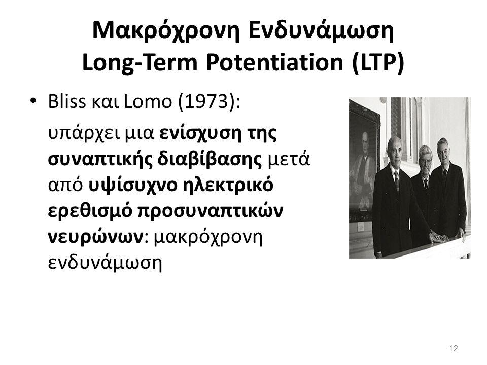 Μακρόχρονη Ενδυνάμωση Long-Term Potentiation (LTP) Bliss και Lomo (1973): υπάρχει µια ενίσχυση της συναπτικής διαβίβασης µετά από υψίσυχνο ηλεκτρικό ε
