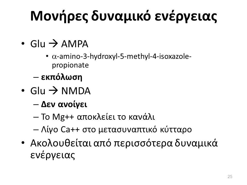 Μονήρες δυναμικό ενέργειας Glu  AMPA  -amino-3-hydroxyl-5-methyl-4-isoxazole- propionate – εκπόλωση Glu  NMDA – Δεν ανοίγει – Το Mg++ αποκλείει το