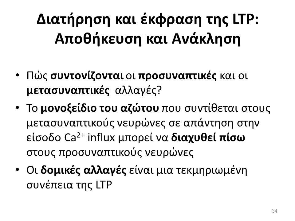 Διατήρηση και έκφραση της LTP: Αποθήκευση και Ανάκληση Πώς συντονίζονται οι προσυναπτικές και οι μετασυναπτικές αλλαγές? Το μονοξείδιο του αζώτου που