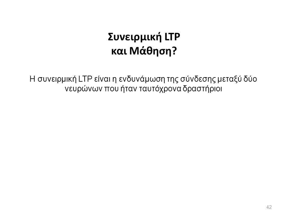 Συνειρμική LTP και Μάθηση? Η συνειρμική LTP είναι η ενδυνάμωση της σύνδεσης μεταξύ δύο νευρώνων που ήταν ταυτόχρονα δραστήριοι 42
