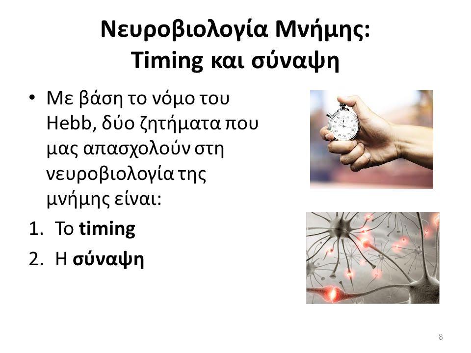 Νευροβιολογία Μνήμης: Timing και σύναψη Με βάση το νόμο του Hebb, δύο ζητήματα που μας απασχολούν στη νευροβιολογία της μνήμης είναι: 1.Το timing 2.Η