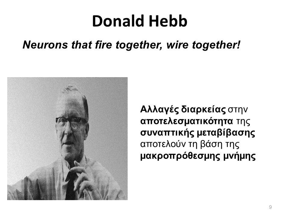 Αλλαγές διαρκείας στην αποτελεσµατικότητα της συναπτικής µεταβίβασης αποτελούν τη βάση της µακροπρόθεσµης µνήµης Donald Hebb Neurons that fire togethe