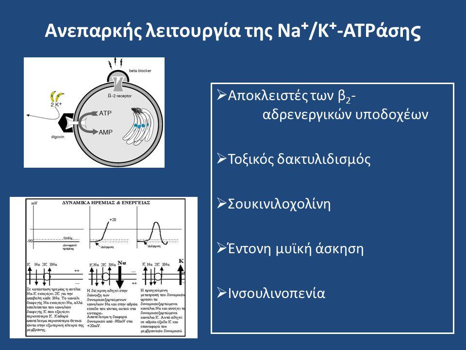 Ανεπαρκής λειτουργία της Na + /K + -ATPάση ς  Αποκλειστές των β 2 - αδρενεργικών υποδοχέων  Τοξικός δακτυλιδισμός  Σουκινιλοχολίνη  Έντονη μυϊκή ά