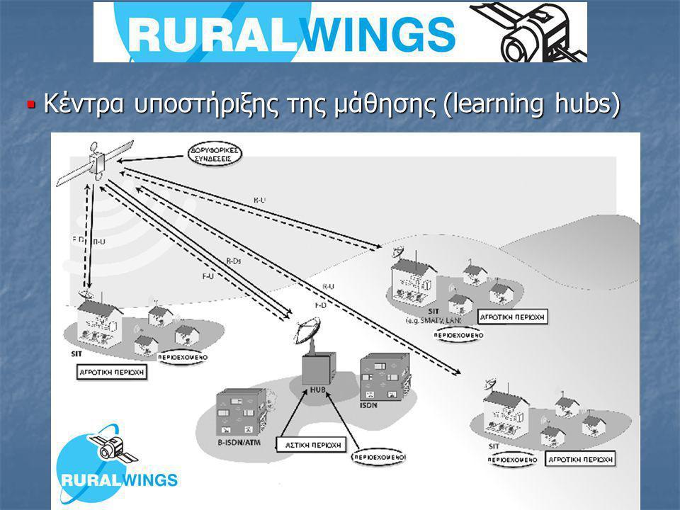  Κέντρα υποστήριξης της μάθησης (learning hubs)