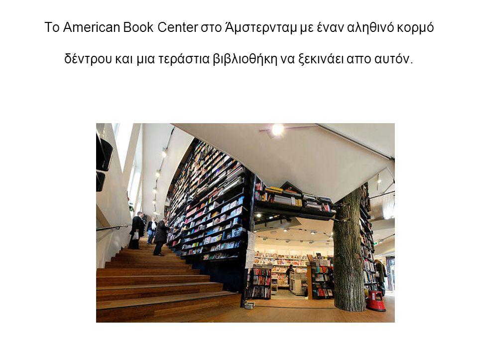 Το American Book Center στο Άμστερνταμ με έναν αληθινό κορμό δέντρου και μια τεράστια βιβλιοθήκη να ξεκινάει απο αυτόν.
