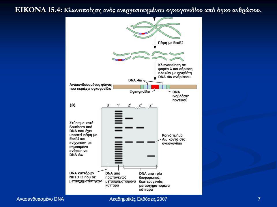 Ανασυνδυασμένο DNA 8Ακαδημαϊκές Εκδόσεις 2007 ΕΙΚΟΝΑ 15.5: ΕΙΚΟΝΑ 15.5: Εντοπισμός της μεταλλαγής που ενεργοποίησε το γονίδιο ras με δημιουργία χιμαιρικών συνδυασμών γενετικού υλικού.