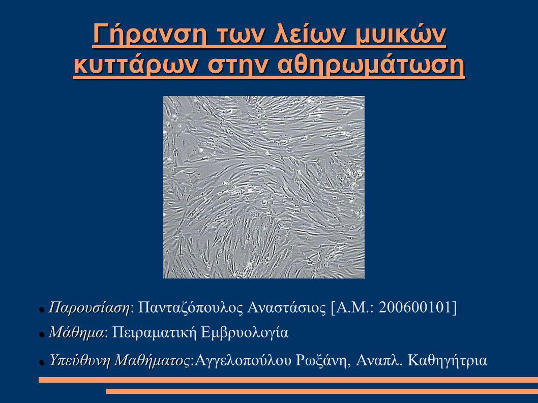 Γήρανση των λείων μυικών κυττάρων στην αθηρωμάτωση Παρουσίαση Παρουσίαση: Πανταζόπουλος Αναστάσιος [Α.Μ.: 200600101] Μάθημα Μάθημα: Πειραματική Εμβρυο
