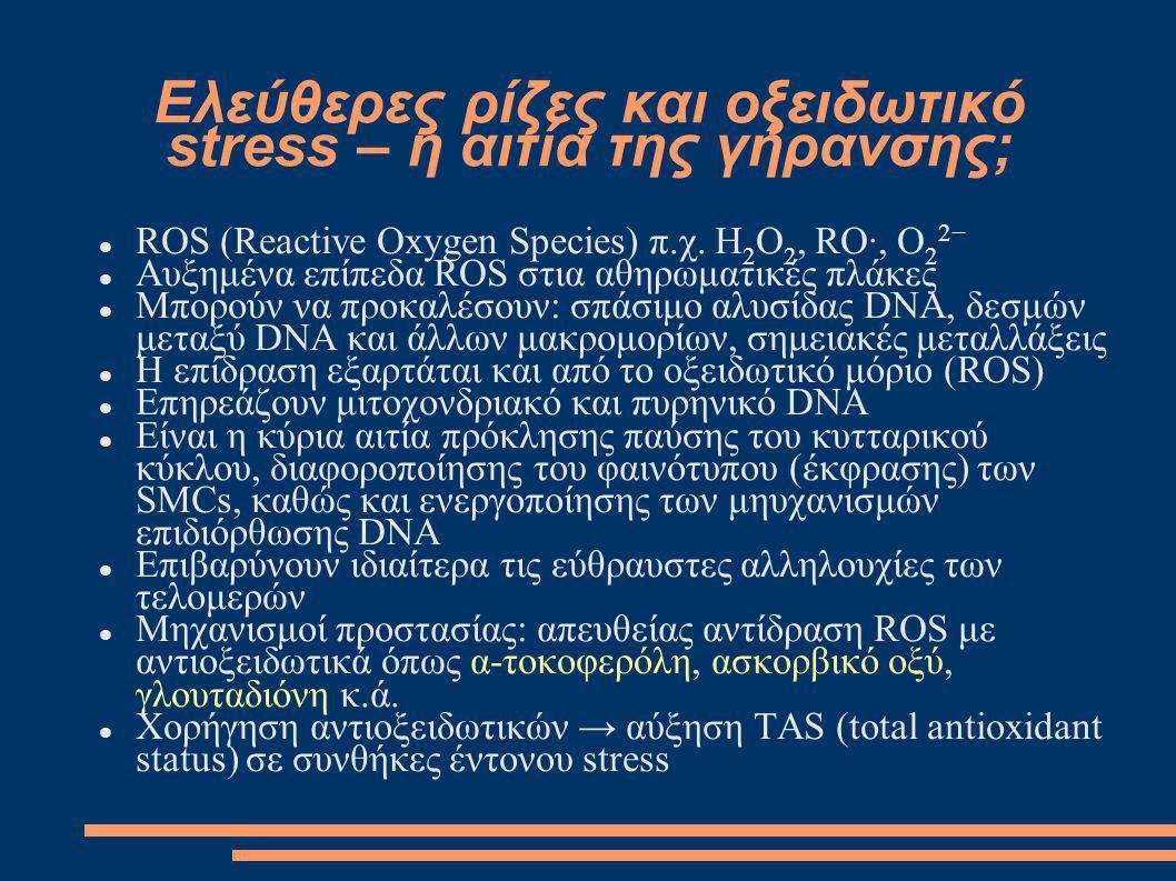 Ελεύθερες ρίζες και οξειδωτικό stress – η αιτία της γήρανσης; ROS (Reactive Oxygen Species) π.χ. H 2 O 2, RO·, O 2 2− Αυξημένα επίπεδα ROS στια αθηρωμ