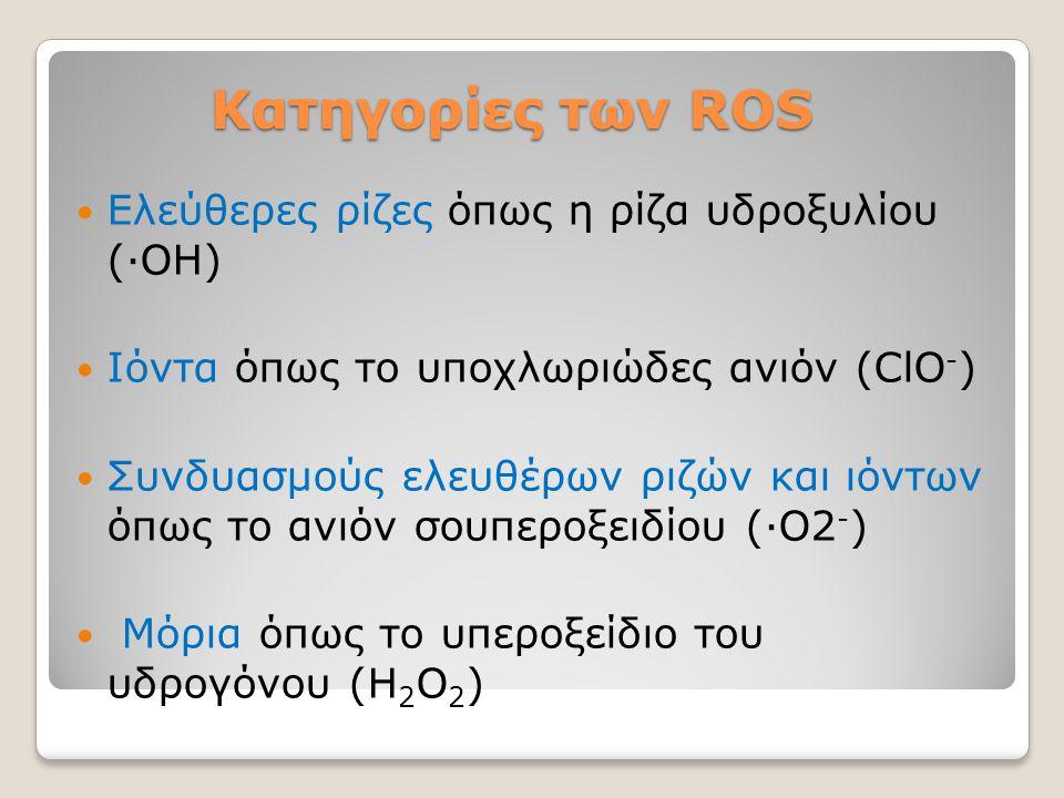 Κατηγορίες των ROS Κατηγορίες των ROS Ελεύθερες ρίζες όπως η ρίζα υδροξυλίου (∙ΟΗ) Ιόντα όπως το υποχλωριώδες ανιόν (ClO - ) Συνδυασμούς ελευθέρων ριζ