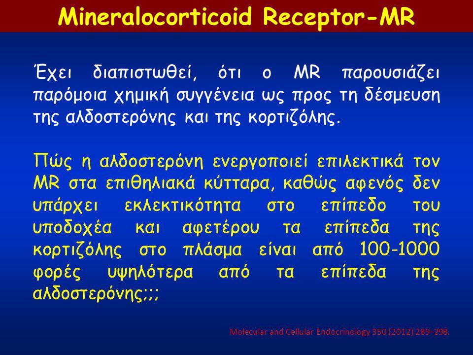 Έχει διαπιστωθεί, ότι ο MR παρουσιάζει παρόμοια χημική συγγένεια ως προς τη δέσμευση της αλδοστερόνης και της κορτιζόλης. Πώς η αλδοστερόνη ενεργοποιε