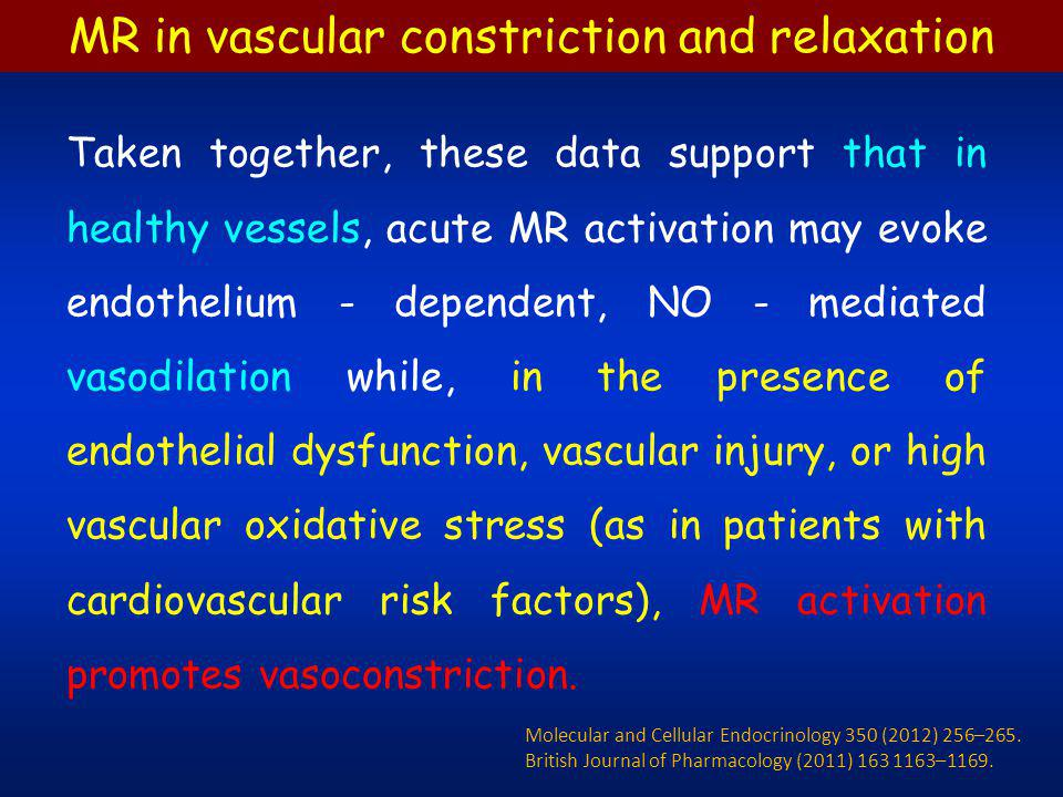 Taken together, these data support that in healthy vessels, acute MR activation may evoke endothelium - dependent, NO - mediated vasodilation while, i