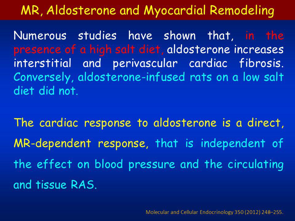 Numerous studies have shown that, in the presence of a high salt diet, aldosterone increases interstitial and perivascular cardiac fibrosis. Conversel