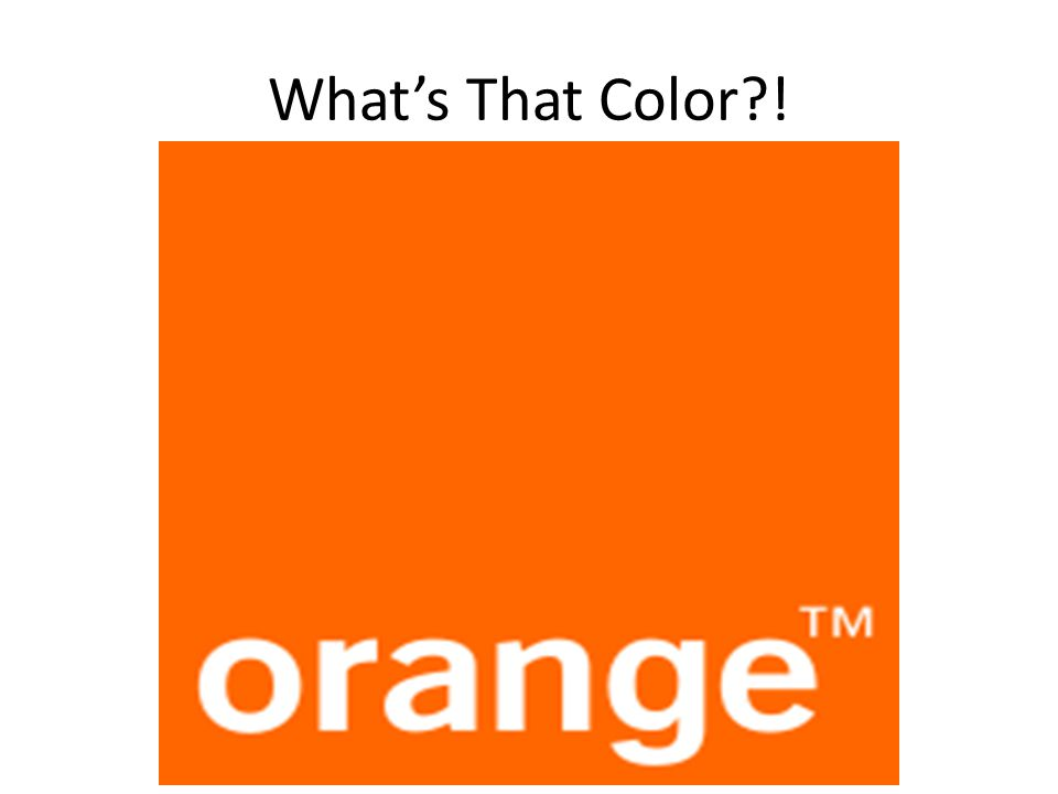 What's That Color?!