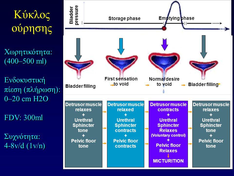 Εκούσιος έλεγχος: παρεγκεφαλίδα, βασικά γάγγλια, υποθάλαμο Ο εγκέφαλος μπορεί να μειώσει την επιτακτικότητα και να καθυστερήσει την ούρηση Πυελικά ν.