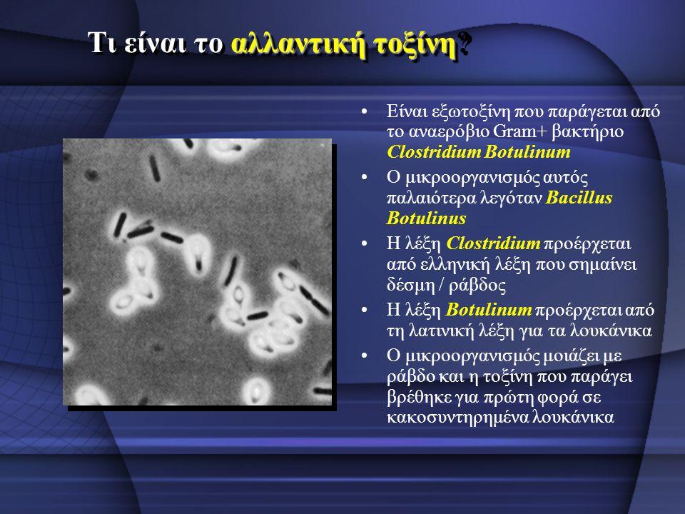 αλλαντική τοξίνη Τι είναι το αλλαντική τοξίνη? Είναι εξωτοξίνη που παράγεται από το αναερόβιο Gram+ βακτήριο Clostridium Βotulinum Ο μικροοργανισμός α
