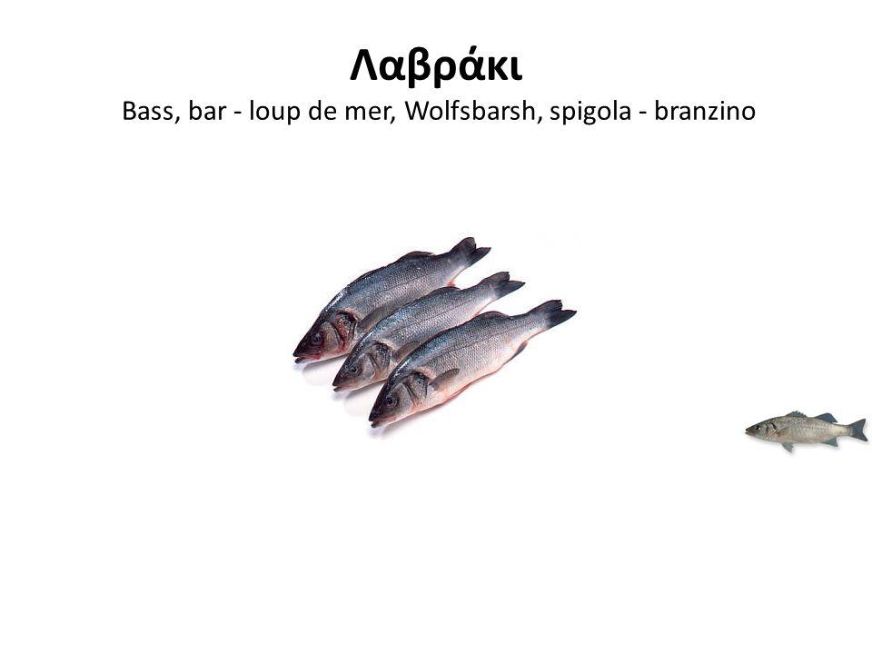 Λαβράκι Bass, bar - loup de mer, Wolfsbarsh, spigola - branzino