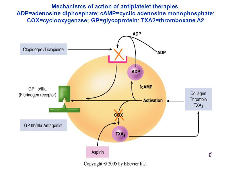 Mechanisms of action of antiplatelet therapies. ADP=adenosine diphosphate; cAMP=cyclic adenosine monophosphate; COX=cyclooxygenase; GP=glycoprotein; T