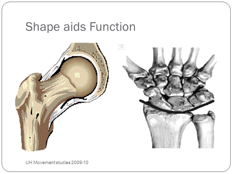 Shape aids Function UH Movement studies 2009-10 25