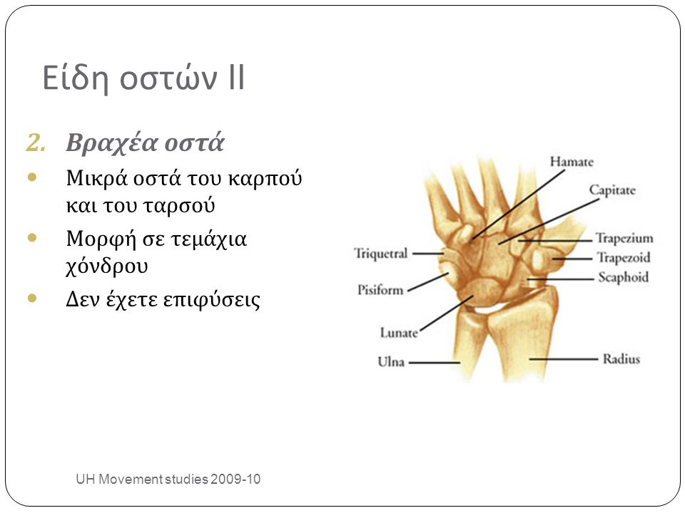 References UH Movement studies 2009-10 30 Moore KL, Dalley AF (1999) Clinically Oriented Anatomy, 4 th ed.