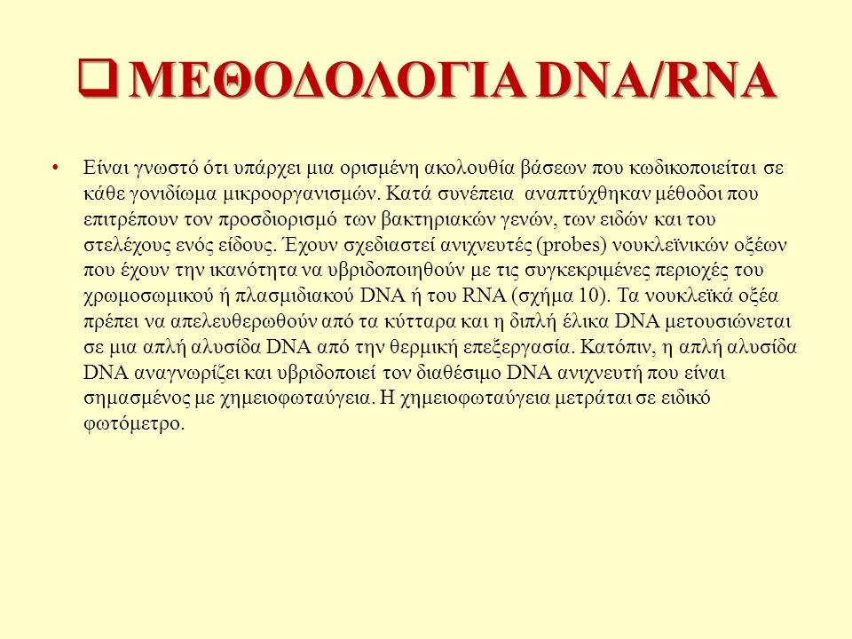  ΜΕΘΟΔΟΛΟΓΙΑ DNA/RNA Είναι γνωστό ότι υπάρχει μια ορισμένη ακολουθία βάσεων που κωδικοποιείται σε κάθε γονιδίωμα μικροοργανισμών.