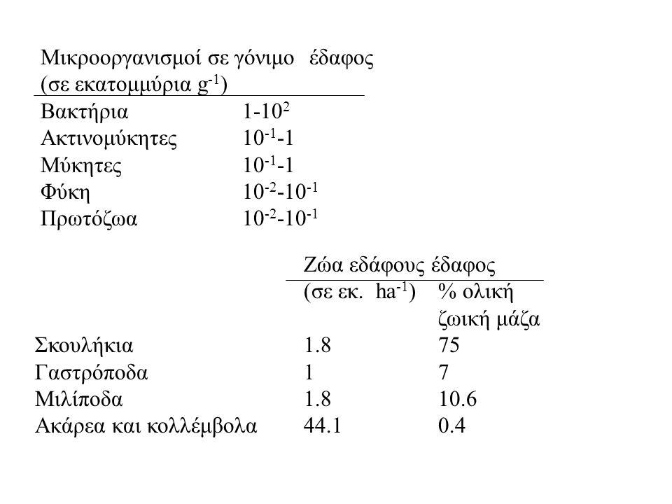 Μικροοργανισμοί σε γόνιμο έδαφος (σε εκατομμύρια g -1 ) Βακτήρια1-10 2 Ακτινομύκητες10 -1 -1 Μύκητες10 -1 -1 Φύκη10 -2 -10 -1 Πρωτόζωα 10 -2 -10 -1 Ζώ
