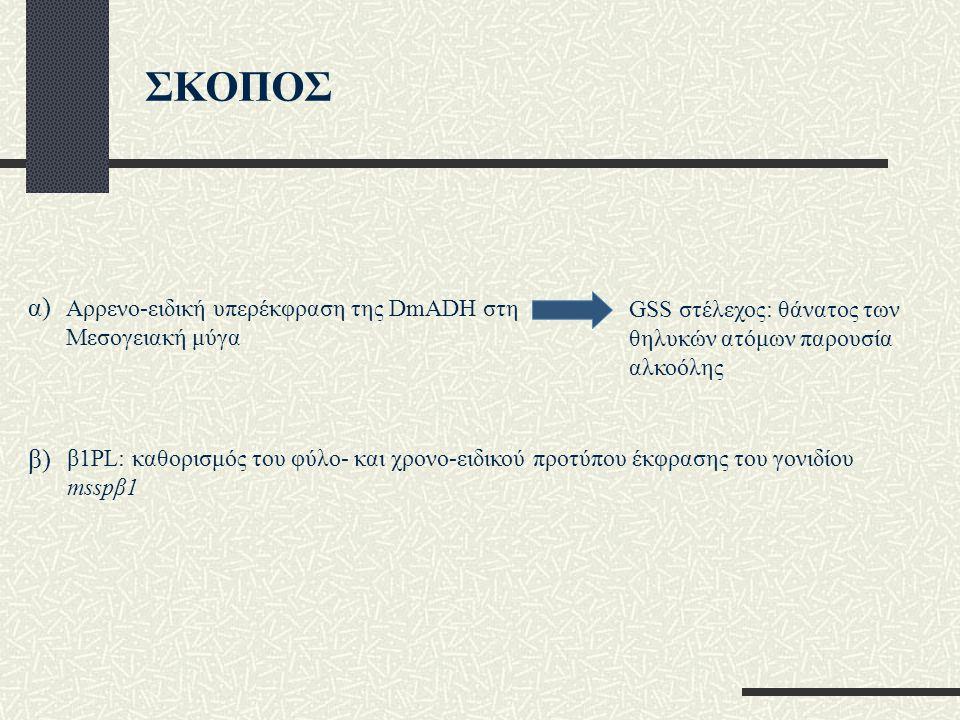 Αρρενο-ειδική υπερέκφραση της DmADH στη Μεσογειακή μύγα β1PL: καθορισμός του φύλο- και χρονο-ειδικού προτύπου έκφρασης του γονιδίου msspβ1 GSS στέλεχος: θάνατος των θηλυκών ατόμων παρουσία αλκοόλης α) β) ΣΚΟΠΟΣ