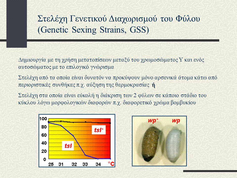 Στελέχη Γενετικού Διαχωρισμού του Φύλου (Genetic Sexing Strains, GSS) Προβλήματα: Μερική αστάθεια σε συνθήκες μαζικής παραγωγής και απώλεια του γνωρίσματος Σχετικά μικρότερη προσαρμοστική ικανότητα λόγω των χρωμοσωμικών ανακατατάξεων Στελέχη Διαχωρισμού Φύλου με τη χρήση διαγονιδιακής τεχνολογίας