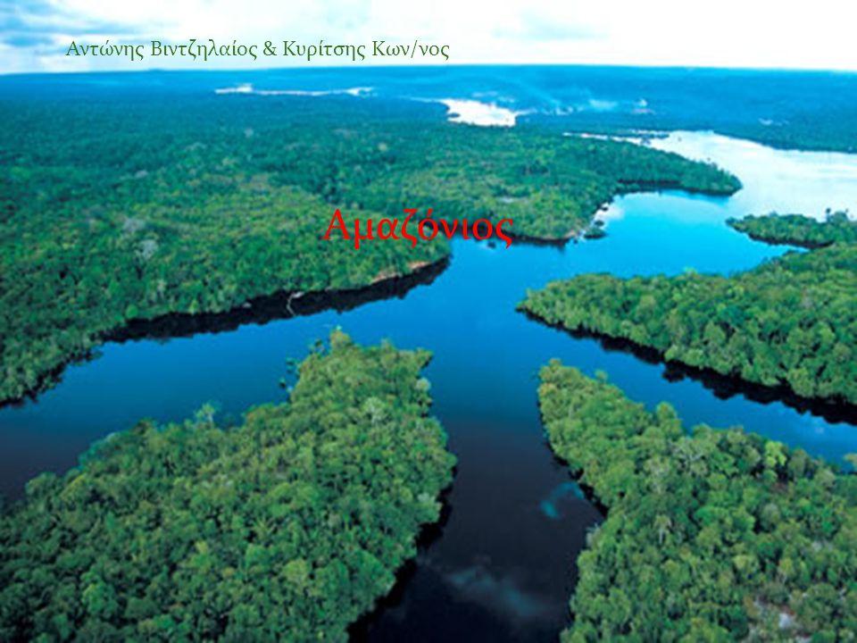 Αμαζόνιος Αντώνης Βιντζηλαίος & Κυρίτσης Κων/νος