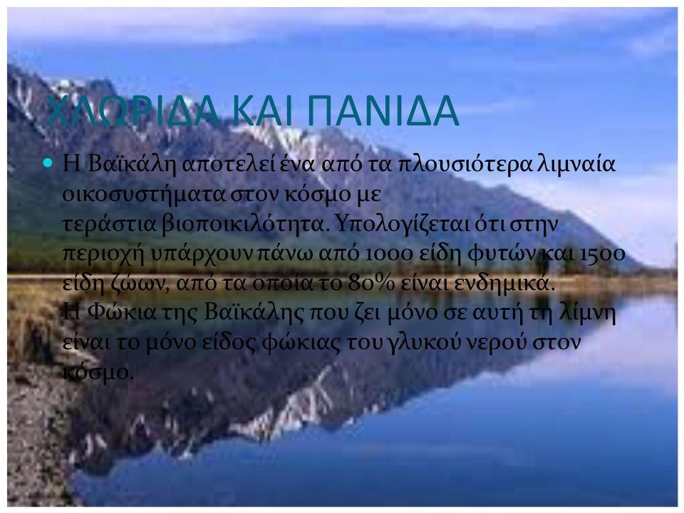 ΧΛΩΡΙΔΑ ΚΑΙ ΠΑΝΙΔΑ Η Βαϊκάλη αποτελεί ένα από τα πλουσιότερα λιμναία οικοσυστήματα στον κόσμο με τεράστια βιοποικιλότητα. Υπολογίζεται ότι στην περιοχ