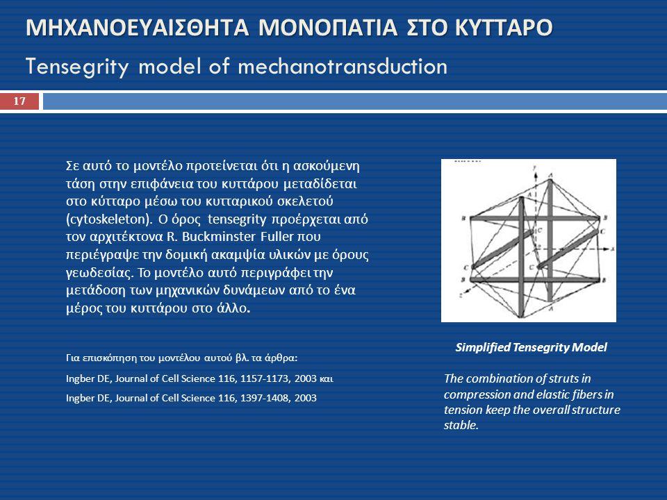 ΜΗΧΑΝΟΕΥΑΙΣΘΗΤΑ ΜΟΝΟΠΑΤΙΑ ΣΤΟ ΚΥΤΤΑΡΟ ΜΗΧΑΝΟΕΥΑΙΣΘΗΤΑ ΜΟΝΟΠΑΤΙΑ ΣΤΟ ΚΥΤΤΑΡΟ Tensegrity model of mechanotransduction Σε αυτό το μοντέλο προτείνεται ότι η ασκούμενη τάση στην επιφάνεια του κυττάρου μεταδίδεται στο κύτταρο μέσω του κυτταρικού σκελετού (cytoskeleton).