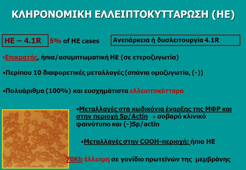 ΗΕ – 4.1R Eπικρατής, ήπια/ασυμπτωματική ΗΕ (σε ετεροζυγωτία) Πολυάριθμα (100%) και ευσχημάτιστα ελλειπτοκύτταρα Περίπου 10 διαφορετικές μεταλλαγές (σπάνια ομοζυγωτία, (-)) Μεταλλαγές στα κωδικόνια έναρξης της ΜΦΡ και στην περιοχή Sp/Actin  σοβαρό κλινικό φαινότυπο και (-)Sp/actin Mεταλλαγές στην COOH-περιοχή: ήπια ΗΕ 70Kb έλλειψη σε γονίδιο πρωτεϊνών της μεμβράνης 5% of HE cases Ανεπάρκεια ή δυσλειτουργία 4.1R ΚΛΗΡΟΝΟΜΙΚΗ ΕΛΛΕΙΠΤΟΚΥΤΤΑΡΩΣΗ (ΗΕ)