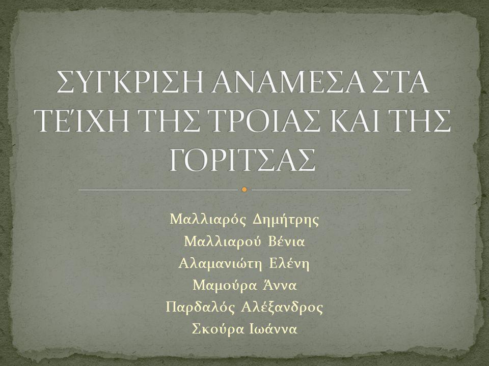 Μαλλιαρός Δημήτρης Μαλλιαρού Βένια Αλαμανιώτη Ελένη Μαμούρα Άννα Παρδαλός Αλέξανδρος Σκούρα Ιωάννα