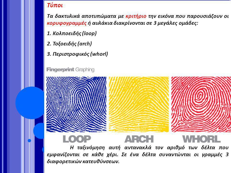 Τύποι Τα δακτυλικά αποτυπώματα με κριτήριο την εικόνα που παρουσιάζουν οι κορυφογραμμές ή αυλάκια διακρίνονται σε 3 μεγάλες ομάδες: 1. Κολποειδής (loo