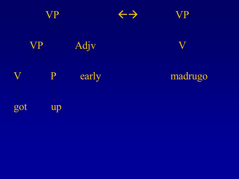 VP  VP VP Adjv V V P early madrugo got up