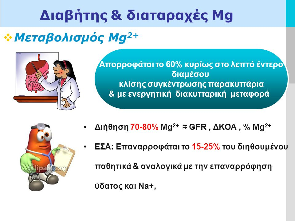 LOGO  Μεταβολισμός Mg 2+ Διαβήτης & διαταραχές Μg Απορροφάται το 60% κυρίως στο λεπτό έντερο διαμέσου κλίσης συγκέντρωσης παρακυττάρια & με ενεργητική διακυτταρική μεταφορά Διήθηση 70-80% Mg 2+ ≈ GFR, ΔΚΟΑ, % Mg 2+ ΕΣΑ: Επαναρροφάται το 15-25% του διηθουμένου παθητικά & αναλογικά με την επαναρρόφηση ύδατος και Na+,