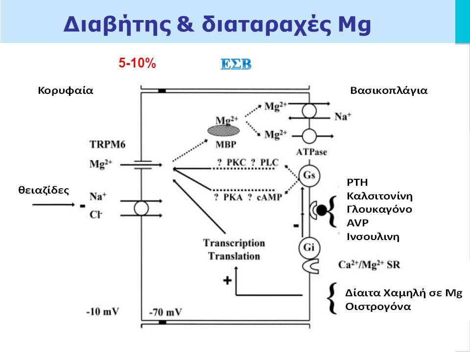 LOGO Διαβήτης & διαταραχές Μg 65-75% ΡΤΗ η καλσιτονίνη το γλουκαγόνο η ADH cAMP ινσουλίνη + 5-10%