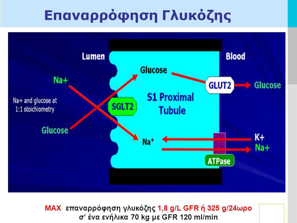 LOGO Γ Επαναρρόφηση Γλυκόζης MAX επαναρρόφηση γλυκόζης 1,8 g/L GFR ή 325 g/24ωρο σ' ένα ενήλικα 70 kg με GFR 120 ml/min