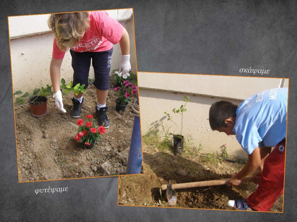 σκάψαμε φυτέψαμε