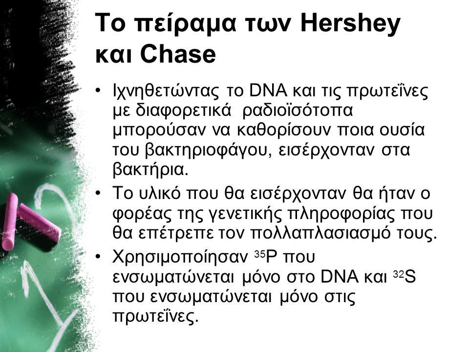 Το πείραμα των Hershey και Chase Για τα πειράματά τους χρησιμοποίησαν τον βακτηριοφάγο Τ 2, έναν ιό που αναπαράγεται σε βακτηριακά κύτταρα. Οι βακτηρι