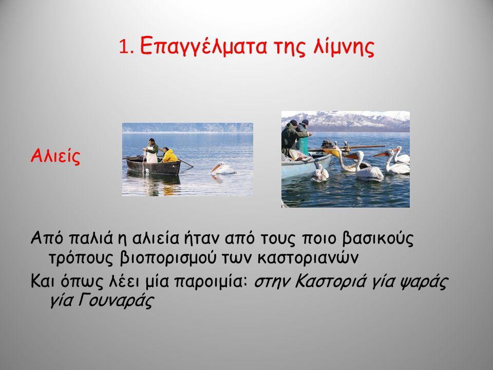 1. Επαγγέλματα της λίμνης Αλιείς Από παλιά η αλιεία ήταν από τους ποιο βασικούς τρόπους βιοπορισμού των καστοριανών Και όπως λέει μία παροιμία: στην Κ