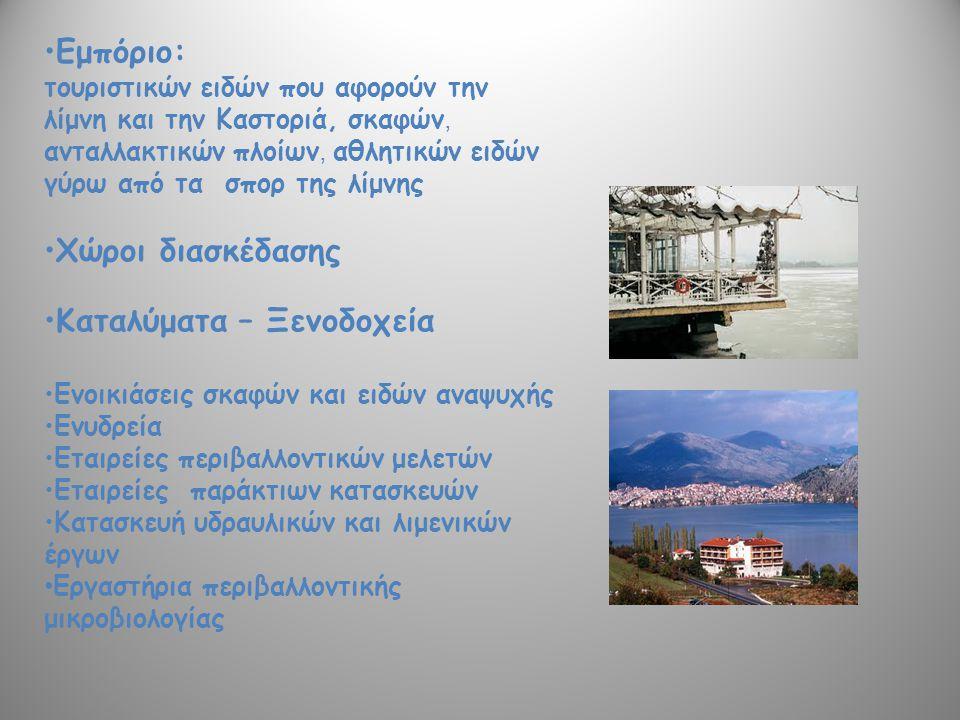 Εμπόριο: τουριστικών ειδών που αφορούν την λίμνη και την Καστοριά, σκαφών, ανταλλακτικών πλοίων, αθλητικών ειδών γύρω από τα σπορ της λίμνης Χώροι δια