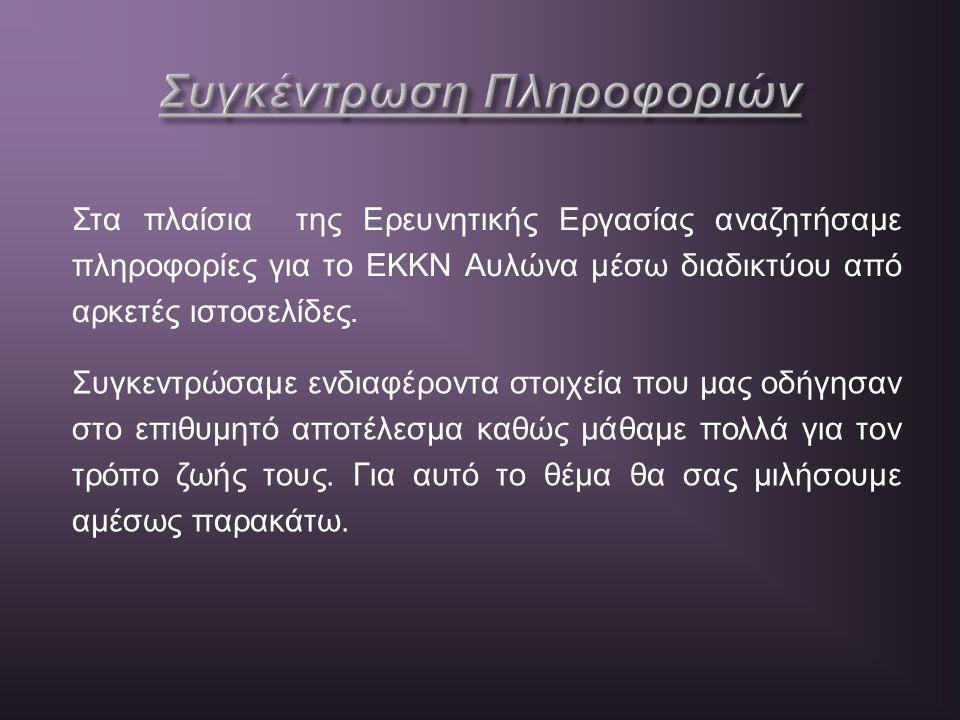 Στα πλαίσια της Ερευνητικής Εργασίας αναζητήσαμε πληροφορίες για το ΕΚΚΝ Αυλώνα μέσω διαδικτύου από αρκετές ιστοσελίδες. Συγκεντρώσαμε ενδιαφέροντα στ