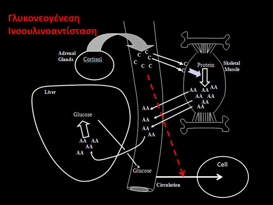 Ινσουλινοαντίσταση Cell
