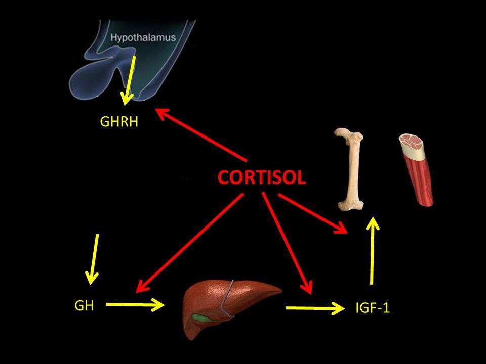 GHRH GH IGF-1 CORTISOL