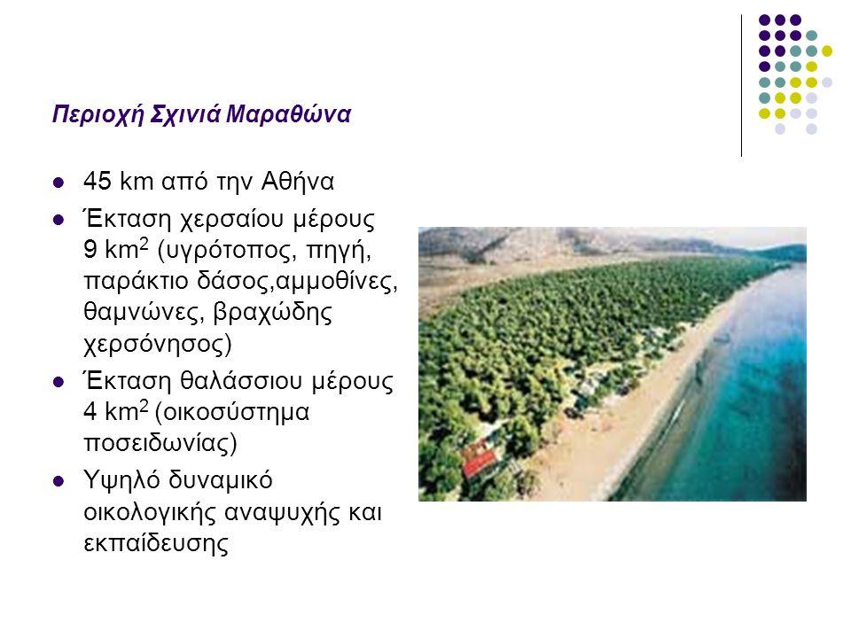 Περιοχή Σχινιά Μαραθώνα 45 km από την Αθήνα Έκταση χερσαίου μέρους 9 km 2 (υγρότοπος, πηγή, παράκτιο δάσος,αμμοθίνες, θαμνώνες, βραχώδης χερσόνησος) Έ