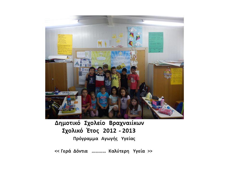 Δημοτικό Σχολείο Βραχναιίκων Σχολικό Έτος 2012 - 2013 Πρόγραμμα Αγωγής Υγείας >