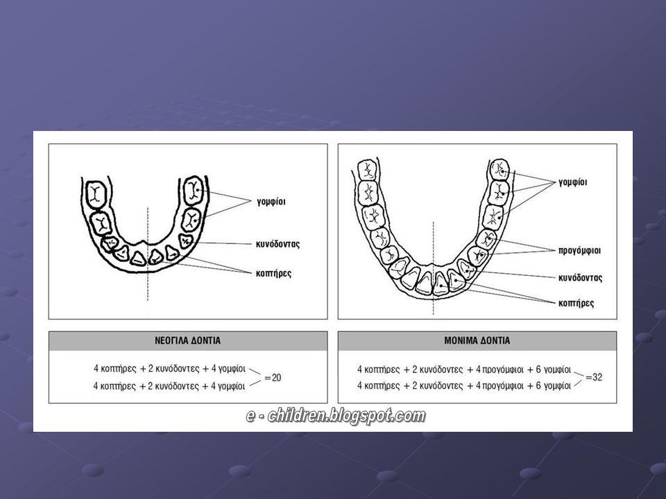 Ουλίτιδα είναι η μόλυνση των ούλων η οποία αν επιδεινωθεί εξελίσσεται σε περιοδοντίτιδα η οποία μπορεί να προσβάλει ακόμη και το οστό που συγκρατεί τα δόντια μας.