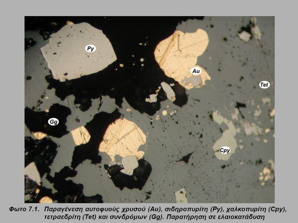 Φωτο 7.1.Παραγένεση αυτοφυούς χρυσού (Au), σιδηροπυρίτη (Py), χαλκοπυρίτη (Cpy), τετραεδρίτη (Tet) και συνδρόμων (Gg). Παρατήρηση σε ελαιοκατάδυση